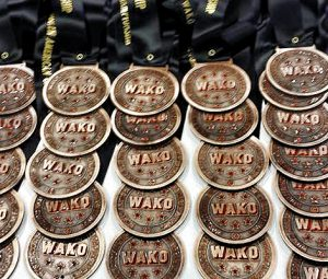 Team USA Results From WAKO North American Championships