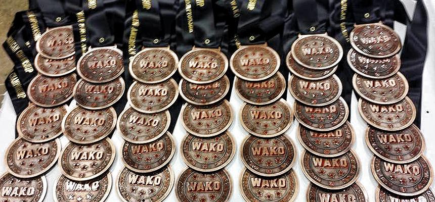 2014 WAKO N. American Kickboxing Results